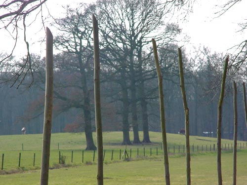 proposal01 Baarn - trajectory for Rembrandt, three trees (oaks) - gardens of the Groeneveld Castle Netherands and the environmental sculptures of Lucien den Arend - his environmental tree sculpture on the estate of Kasteel Groeneveld in Baarn - site specific art